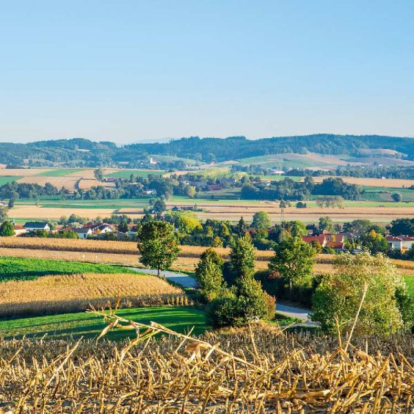 Bayerbach-Landschaft