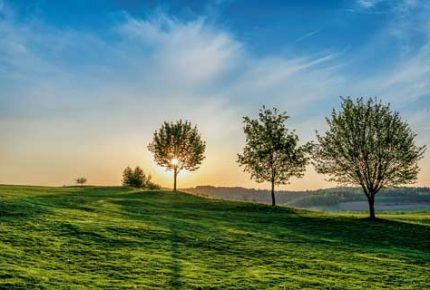 Bella-Vista-Golfpark