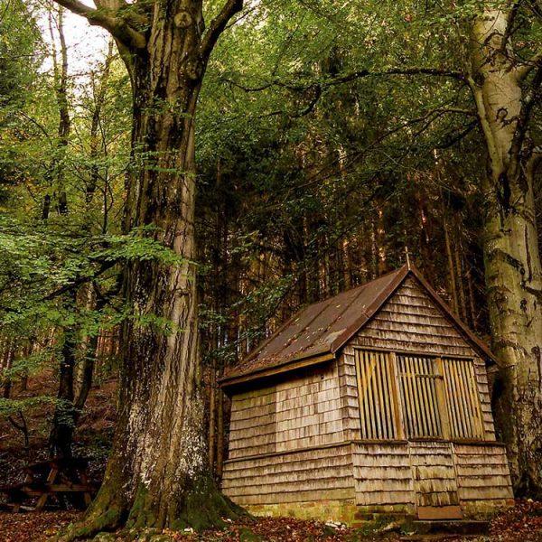 Holzkapelle-am-Klimapfad