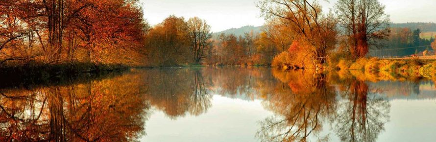 Rott-im-Herbst