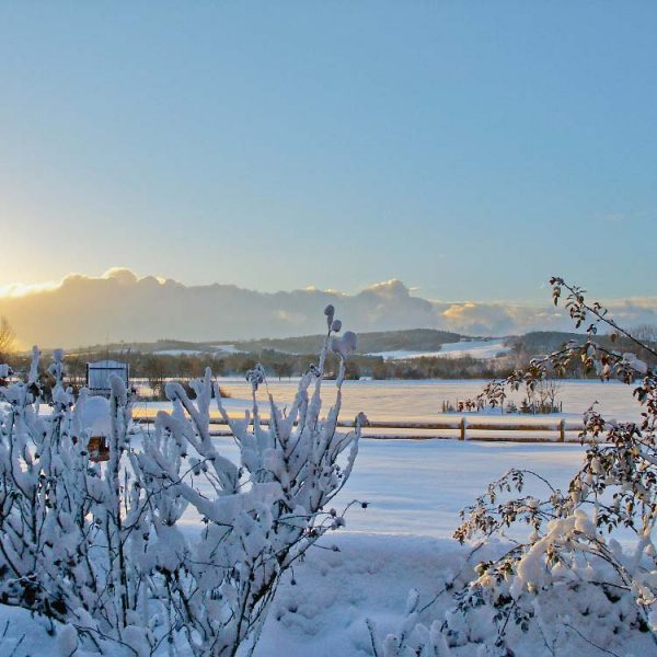 winter-bad-birnbach-sonnengut